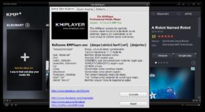 Известные аналоги KMPlayer