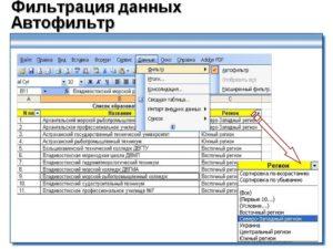 Программа Microsoft Excel: сортировка и фильтрация данных