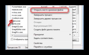 Что за процесс NVXDSYNC.EXE