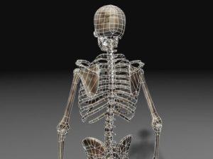 Работа с моделью скелета человека онлайн