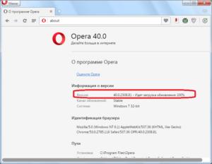 Браузер Opera: автообновление страниц
