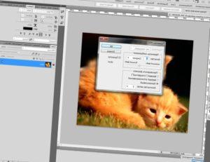 Уменьшаем изображение в Фотошопе