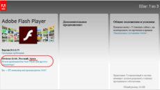 Не работает Flash Player в браузере: основные причины возникновения проблемы